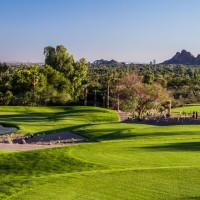 the-phoenician-11