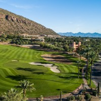 the-phoenician-16